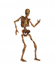 Jättestort skelett i kartong 180 cm - Halloweendekroation