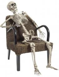 Skelett i verklig storlek 160 cm - Halloweendekoration