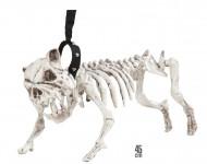 Hundskelett i koppel 45 cm - Halloweendekorationer