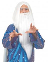 Trollkarlsperuk för vuxna med vitt skägg