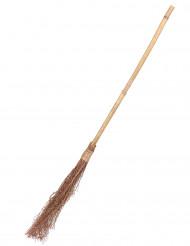 Häxkvast i bambu 88 cm