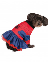 Hunddräkt Spider-Girl™