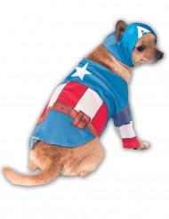 Hunddräkt Captain America™