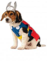 Hunddräkt Thor™