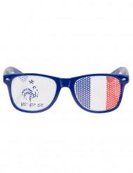 Glasögon Frankrike FFF™