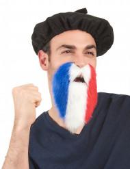 Franskt supporterskägg