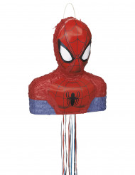 Spiderman™ piñata