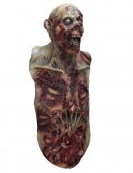 Heltäckande Mask och överdel som föreställer zombie - för vuxen
