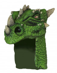 Grön Drakhjälm, vuxen