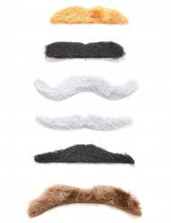 Kit med 6 självhäftande mustascher