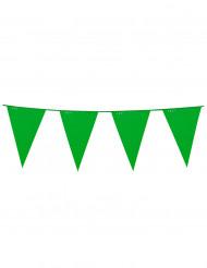 Lång vimpelgirland i grönt 10m