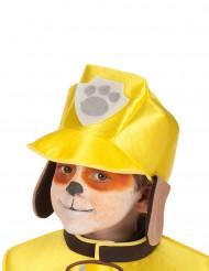 Hund patrull hatt barn