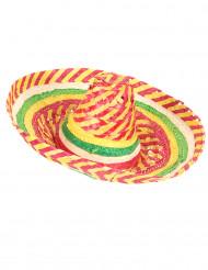 Mexikansk sombrero tutti frutti för vuxna