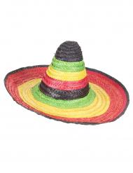 Mexikansk flerfärgad sombrero