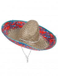 Mexikansk sombrero med brätte i röttoch blått herrar