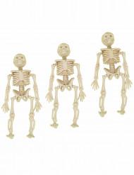 3 dekorativa skelett till Halloween