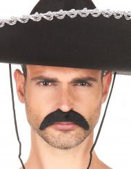 Svart mustasch - Maskeradtillbehör för vuxna