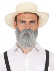 Grå mustasch och skägg för vuxna