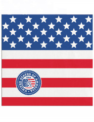 20 små pappersservetter med USA-tryck