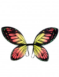 Färgglada fjärilsvingar barn