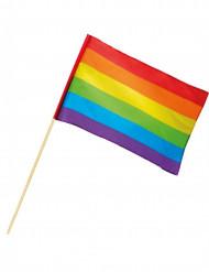 Regnbågsflagga 30x45 cm