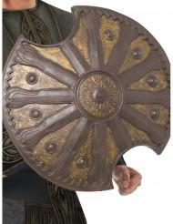 Romersk bronssköld 50 cm