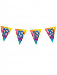 Girland 18-årsdagen - Födelsedagsdekoration 5m