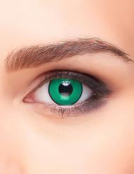 Fantasy grönsvarta kontaktlinser vuxen