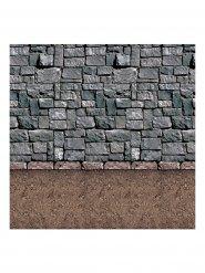 Borgsvägg - Enorm väggdekoration 1,2 x 9,1 m