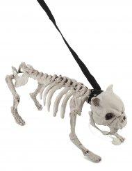 Hundskelett med ljud och ljus - Halloweendekoration