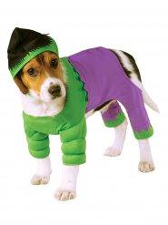 Hulken™ - Maskeraddräkt för hundar