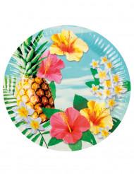 6 Hawaii-tallrikar 23 cm