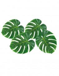 Palmblad - Bordsdekoration 33 x 27 cm