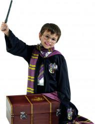 Kista från Harry Potter™ för barn