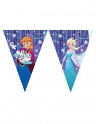 Frost™ - Vimplegirland med Elsa & Anna™