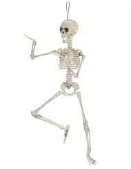 Skelett med rörelse - Halloweenpynt