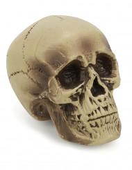 Kranium i plast - Halloweendekoration