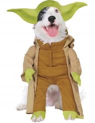 Master Yoda™ hunddräkt från Star Wars™