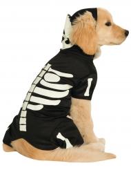 Självlysande skelettdräkt för hundar till Halloween
