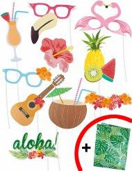 Photoboothkit i Hawaiitema med 10 delar och back-drop