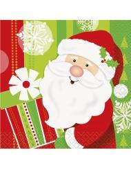 16 Små servetter med jultomten 25x25 cm