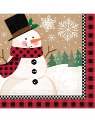 16 servetter med trevlig snögubbe 33 x 33 cm
