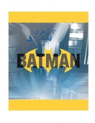 8 påsar till fiskdammen från Batman™ 18 x 23 cm