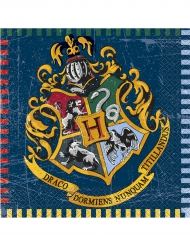 16 Harry Potter™ servetter 33 x 33 cm