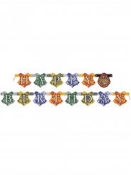 Happy Birthday-slinga från Harry Potter™