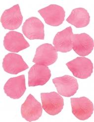 288 rosa rosenblad