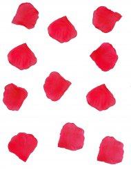 288 rosenblad