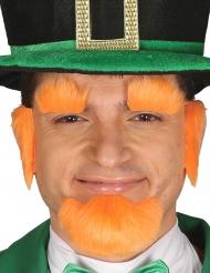Kit med orange ansiktsbehåring - St. Patrick