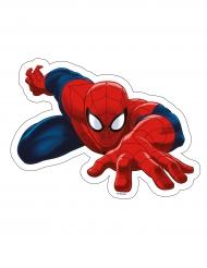 Tårtbild från Ultimate Spider-man™