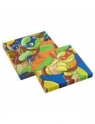 20 servetter i papper från Ninja Turtles™ 33 x 33 cm
